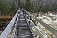 The Thoreau Falls Trail bridge, which crosses the East Branch of the Pemigewasset River, in the Pemigewasset Wilderness of New Hampshire. This bridge ...