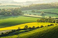 Spring morning in South Downs National Park, East Sussex, England.