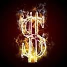 Dollar symbol burning, fire.