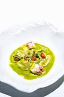 Octopus, Les Moles Restaurant, one-star Michelin, Ulldecona Village, La Senia Territory, Terres de l´Ebre, Tarragona, Catalunya, Spain.