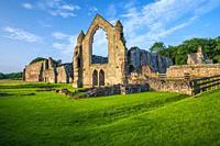 Haughmond Abbey, Shropshire, England, United KIngdom, Europe.