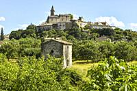 old small village Grillon with orchard and fig tree, Provence, France, department Vaucluse, region Provence-Alpes-Côte d'Azur.
