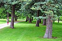 University campus park, Pamplona, Navarra, Spain