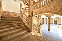 Escalera de la Casa de las Conchas in Salamanca, Salamanca City, Province of Salamanca, Spain, Europe.