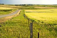 Landscape near Pincher Creek, Alberta, Canada.