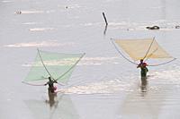 China, Fujiang Province, Xiapu County, Fishermen on foot, shrimp fishing with net.