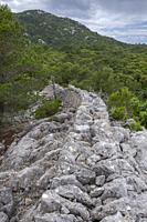 muro tradicional de piedra - Pedre en Sec - Fita del Ram, Esporles, Paraje natural de la Serra de Tramuntana, Mallorca, balearic islands, Spain.