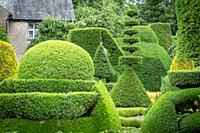 Beautiful geometric Hedgebery of Levens Hall , Kendal, Cumbria , UK.