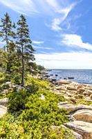 Schoodic Peninsula on the Atlantic Ocean in Acadia National Park on the coast of Maine in the United States.