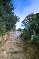 Montagna Grande, district of Siba. trail to the cave of the dry bathPantelleria, Sicily.