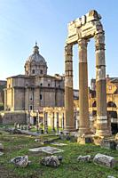 Early morning, looking across The Roman, Forum of Caeser, an extension of the Forum Romanum, with the temple of Venus Genetrix in the foreground, Rome...