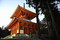 Konpon Daito Great Stupa,central pagoda in Danjo Garan of Kongobuji temple at Koyasan,Mount Koya,Japan,Asia.
