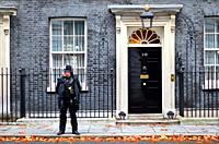 Police officer outside number 10 Downing Street, London, England, UK. Autumn (November).