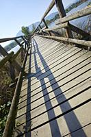 Wooden foot bridge at Sebino Peat-Bog Nature Reserve, in the south of Lake d'Iseo, province of Brescia, Italy.