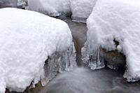 Icicles by forest stream, close up. Baden Wuerttemberg (Baden-Wurttemberg), Germany, Europe.