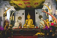 Golden Buddha statue inside the Temple of the Sacred Tooth Relic, Kandy, Sri Lanka,.