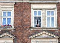 Person Peering out of a Window of a Home, Jewish Quarter, Krakow, Poland.