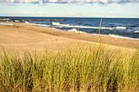 beach of the Baltic sea with beach grass.