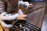 Close up of hands of a Chinese woman playing a zither, a traditional Chinese musical instrument.