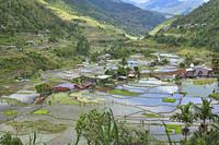 The beautiful UNESCO rice terraces in Hapao, Banaue, Mountain Province, Philippines.