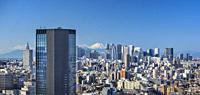 Japan, Tokyo City, Shinjuku Skyline and Mount Fuji, panorama.