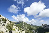 Puig de Ses Bassetes, 1212 metros, Escorca, Paraje natural de la Serra de Tramuntana, Mallorca, balearic islands, Spain.
