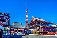 Japan, Tokyo City, Mamamatsucho area, Zojoji Temple and Tokyo Tower.