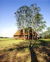 Old barn. Poland.