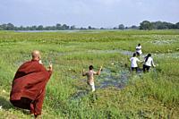 Sri Lanka, Polonnaruwa, monk.
