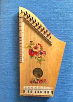 Music instrument zither.
