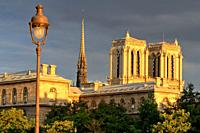 Wide angle view of the spire and the towers of Notre Dame at the golden hour, Paris, France.