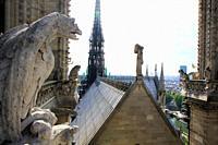 Roof details of Notre Dame de paris, France.