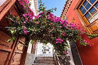 Downtown in Garachico village, famous touristic destination in Tenerife, Canary islands, Spain .