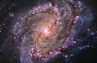 OUTER SPACE -- 09 Jan 2014 -- The vibrant magentas and blues in this Hubble Space Telescope composite image of the barred spiral galaxy M83 reveal tha...