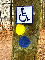 Sign with symbol of handicapped person for a trekking path in Snogeholm, Scania, Sweden.