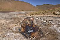 Boiling fumarole on the Rio Blanco river near El Tatio Geyser, San Pedro de Atacama, Chile.