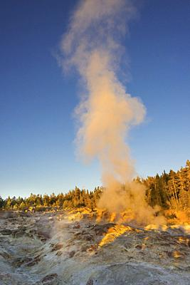 Norris Geyser Basin, Yellowstone National Park, USA.