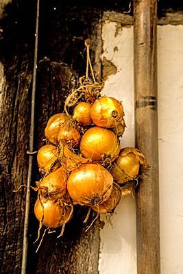 onions, braided at an old farm house.