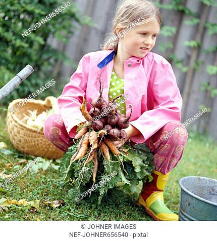 A girl holding carrots, Sweden