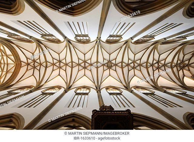 Starry vault of the church ceiling, Basilica of St. Ulrich and Afra, Augsburg, Schwaben, Bavaria, Germany, Europe