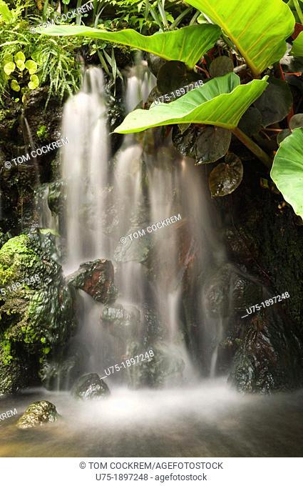 miniature fountain, botanic gardens, singapore