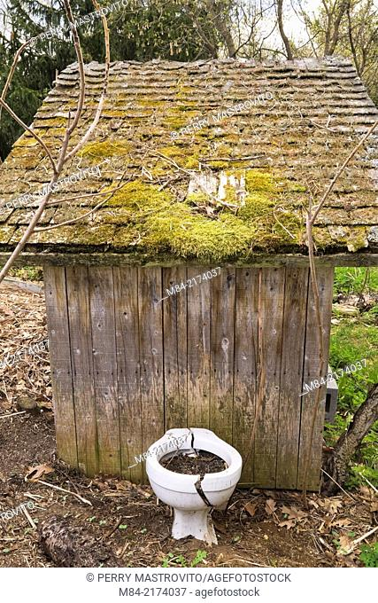 "Cracked toilet bowl used for planting flowers next to a rustic outhouse in the """"Jardin du Grand Portage"""" garden in spring, Saint-Didace, Lanaudiere, Quebec"