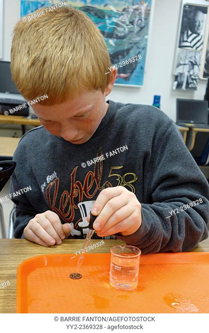 6th Grade Boy Doing Science Experiment, Wellsville, New York, United States