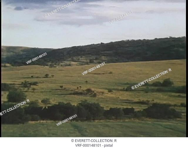 Pan view of valley