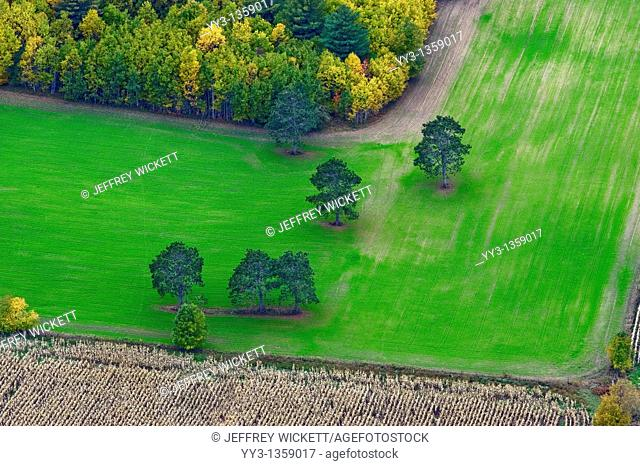 Aerial view of farm field and autumn color in Mason county Michigan, USA