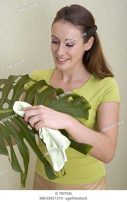 Woman, room plant, leaf, wipes off, Half portrait,   Plant friend, plant lovers, 'green thumb', dusting, entstauben, plant, ornamental plant, window leaf
