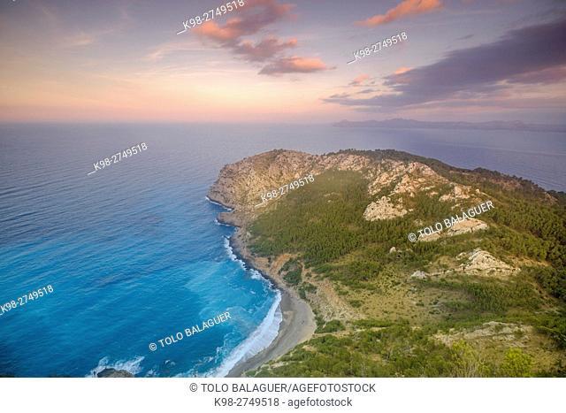 playa es Coll Baix y Cap de Menorca, Alcudia, Majorca, Balearic Islands, Spain
