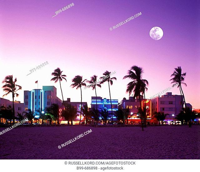 Palm Trees And Beach, Ocean Drive South, Beach Miami Beach, Florida, USA