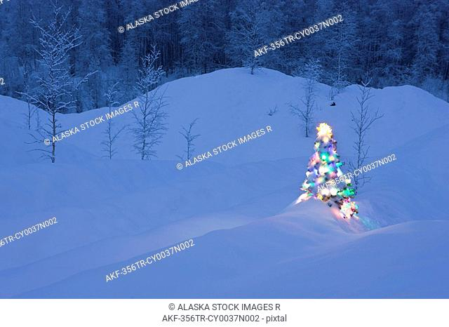 Lit Christmas tree at twilight surrounded by snowcovered old mine tailings & young birch forest near Fairbanks, Alaska