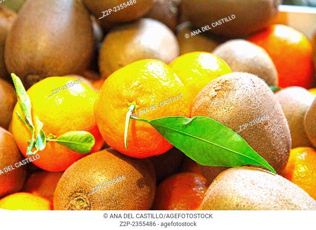 Oranges and kiwis Valencia Spain